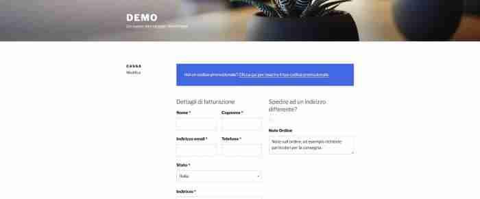 """Come personalizzare WooCommerce: il checkout - Elimina il campo """"Ragione sociale"""""""