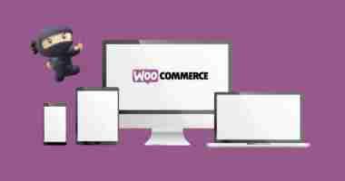 Come rimuovere gli stili di default di WooCommerce