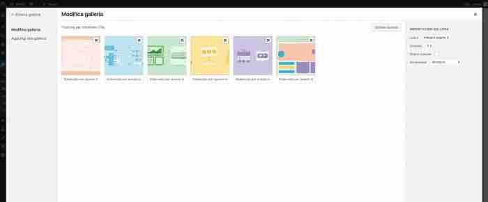 Scopri il nuovo WordPress 4.9 - Opzioni widget Galleria