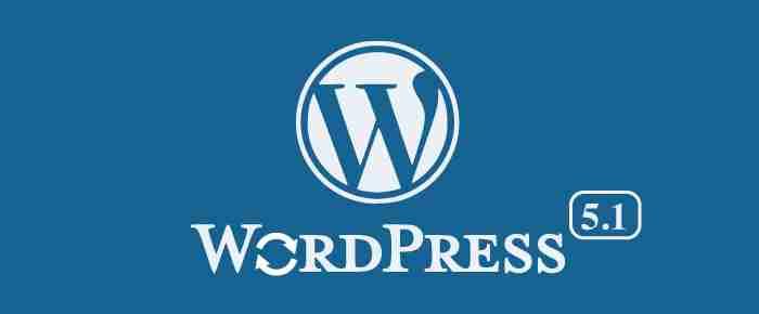 Scopri il nuovo WordPress 5.1
